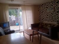 Room Share Available in Bright Twin Room Garden House Share