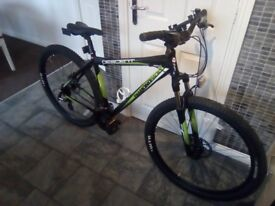 Men's diamond back descent mountain bike