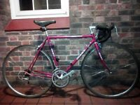 Rare Giant Peloton Lite bicycle Shimano 105 classic Sz medium-large road race fast smooth bike cycle