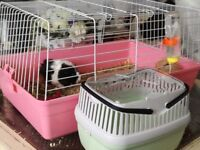 Pink indoor guinea pig cage with new small pet carrier £15 for both