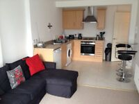 One Bed Ground Floor Apartment With Patio Knocksallagh Green. Part Furnished