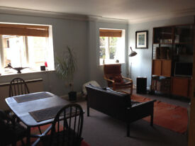 Share sunny beautiful 2 bed flat in Canterbury centre w/ parking