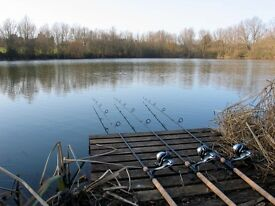 CASH PAID STRAIGHT AWAY for setups gear carp course match sea fly vintage fishing gear wanted