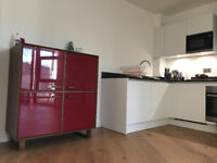 Short Let Hackney Road Luxury One Bed Flat October 5 - 16