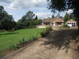 Bungalow with large garden and huge outbuildings