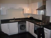 One Bedroom Flat - Edmund Court, Sheffield S2 4DE