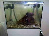 Tmc signature 600 130ltr marine aquarium