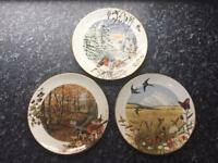 Royal Worcester Collectable Plates