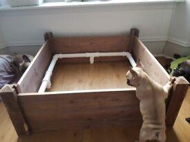 Dog Whelping Box with Pig Rails