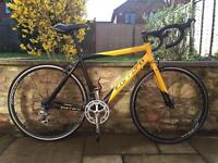 Carrera tdf road bike will post