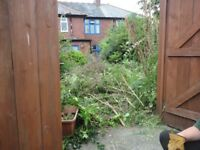 check a trade,s,over grown garden tidy clearance ,garden north shields,tidy,landscape gardener,