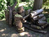Logs, large quantity of , 2 years seasoned