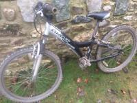 Mountain Bike Giant MTX 250 offers