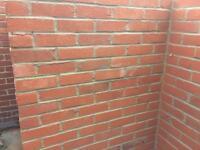 Red Bricks x 250