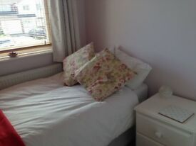 Single room in lovely house- Wollaton, Nottingham