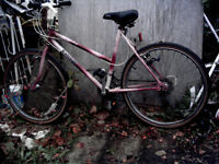 RALEIGH MONTEREY 15 SPEED MOUNTAIN BIKE. GOOD CONDITION. CAN DELIVER LOCALLY.
