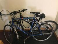 Road and Mountain bike