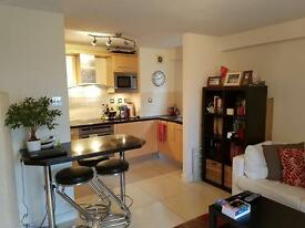 BEAUTIFUL 1 BED APARTMENT IN WAPPING - CLOSE TO CITY - FULLY FURNISHED
