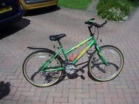 Child's Raleigh 'Max' Mountain Bike - 20 inch wheels - very good condition - reduced price