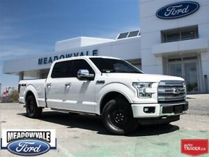 2016 Ford F-150 Platinum,SUNROOF,LEATHER,NAVIGATION