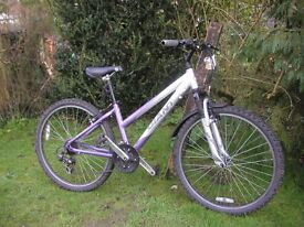 giant rock ladies bike,front suspension 14 in frame,runs well
