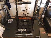 99KG Cast Iron Weights Plates, Dumbbells, Barbell, EZ Bar, Squat Rack, Squat Pads, Weight Tree