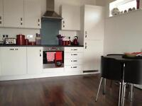 Good sized double room to rent in new apartment