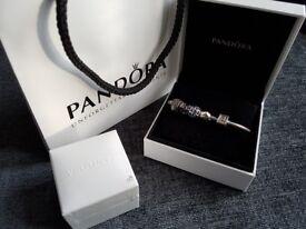 Pandora Bundle includes 5 Charms and Bracelet