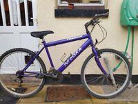"Integra mountain bike. 18"" Frame. working"