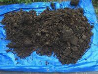 Top Soil / fill dirt - free