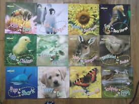 Kids book collection - life cycles / 12 softbacked, illustrated books.
