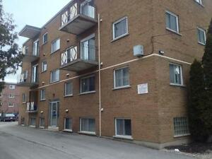 NEWLY RENOVATED 2 BD IN CENTRAL LOCATION! 8- 51 Stanley St