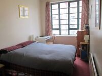Bright double bedroom in pleasant Leith flat to rent for 3-months