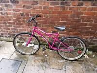 Apollo Incessant Women's 16inch Bike