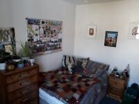 Cosy double room to rent