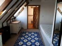 Lovely Room in historic building