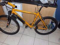 gents 20 inch mountain bike