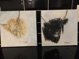 Gorgeous highland cows 30 cm by 30