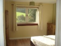 Spacious three bedroom flat to let