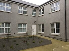 New 2 Bedroom apartment for rent in Newry City Centre