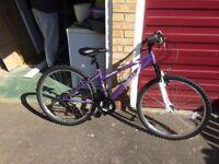 Woman's/girls mountain bike. As new!