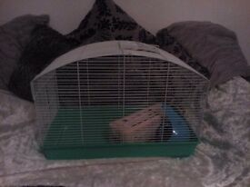 !!!!!TWO INDOOR GREEN PET CAGES FOR SALE WITH BEDDING AND EXTRAS!!!!!!!