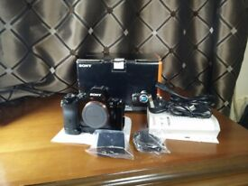 Sony a7R 36mp full frame camera body