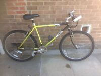 Men's bikes from £25 ready to ride