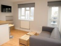 Modern THREE DOUBLE BEDROOM apartment - Breamore House, Peckham, London SE15