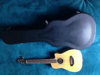 Almost new rock hard case and Turner guitar deal