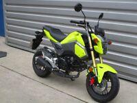Honda MSX125 - Low Miles!