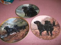 3 lovely Franklin Mint Gold edged plates featuring black labradors