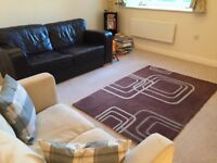 2 sofas, tv stand, rug, computer table and office chair