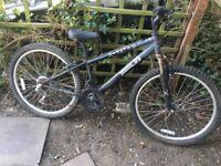 5 X Bikes £10 Each
